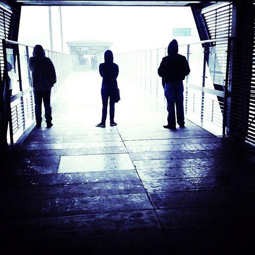Rain Day Shadow Cold Days Transmilenio Bogotacity