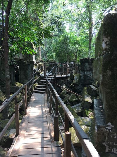 Hindu Temple Peaceful History Serene Cambodia Hindu Temple Tree Day Railing Outdoors Nature Footbridge Sunlight Built Structure Growth Beauty In Nature