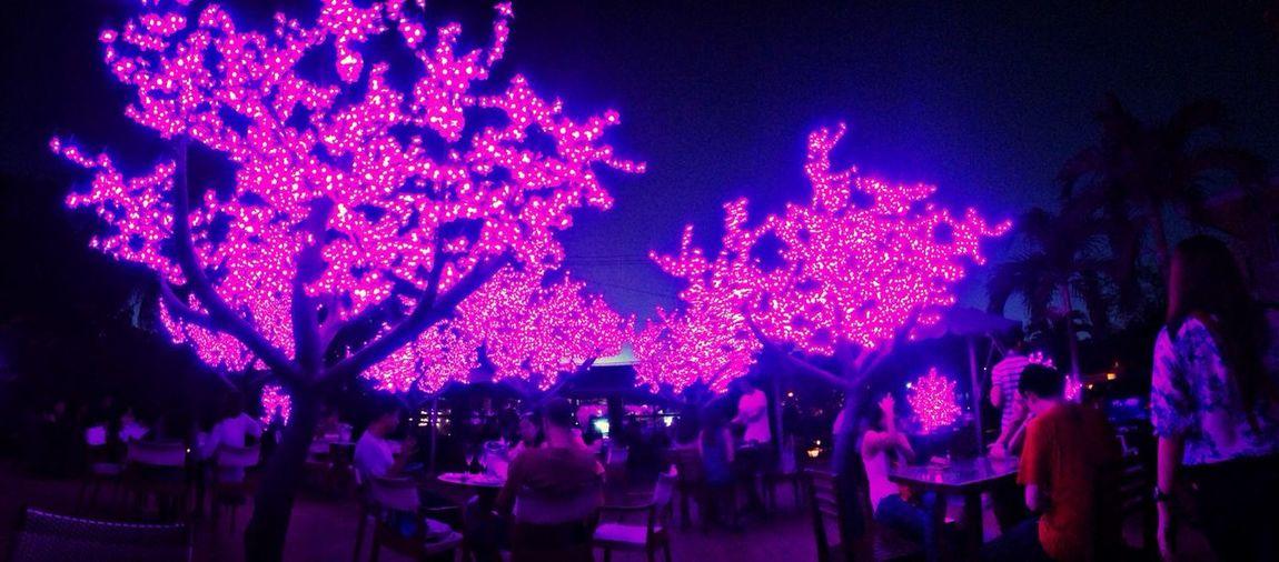 Light blossom