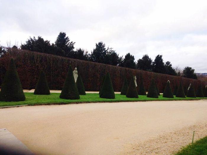 Jardim Da Maria Antonieta , - Palé De Versail