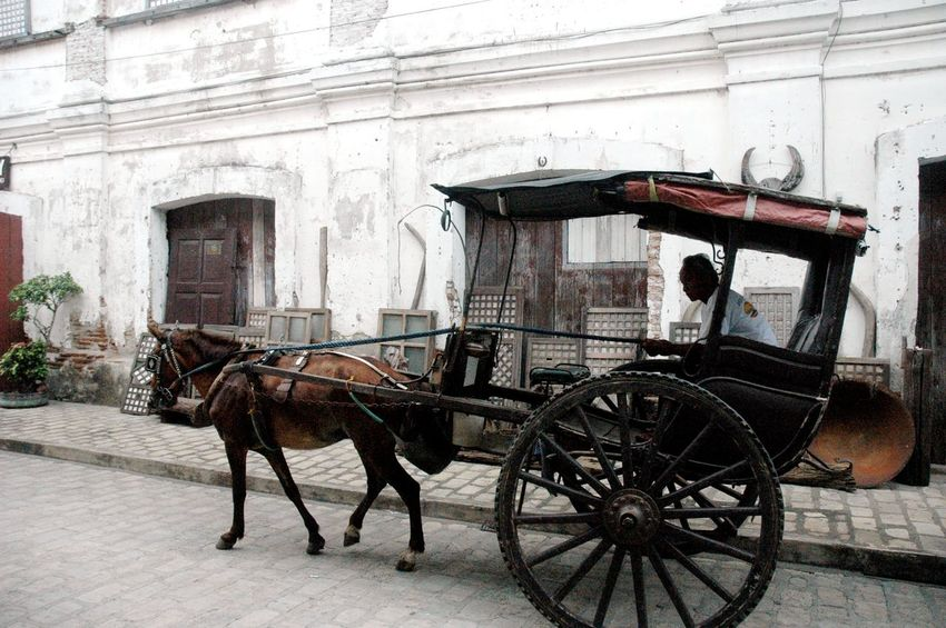 Animal Themes Architecture Building Exterior Built Structure Carriage Cart City Day Domestic Animals Eyeem Philippines Eyeem Philippines Album Horse Horse Cart Horsedrawn Mode Of Transport No People Old-fashioned One Animal Outdoors Street Transportation Travel Travel Destinations Travel Photography Working Animal