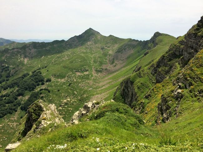Mountains Landscape Green Air