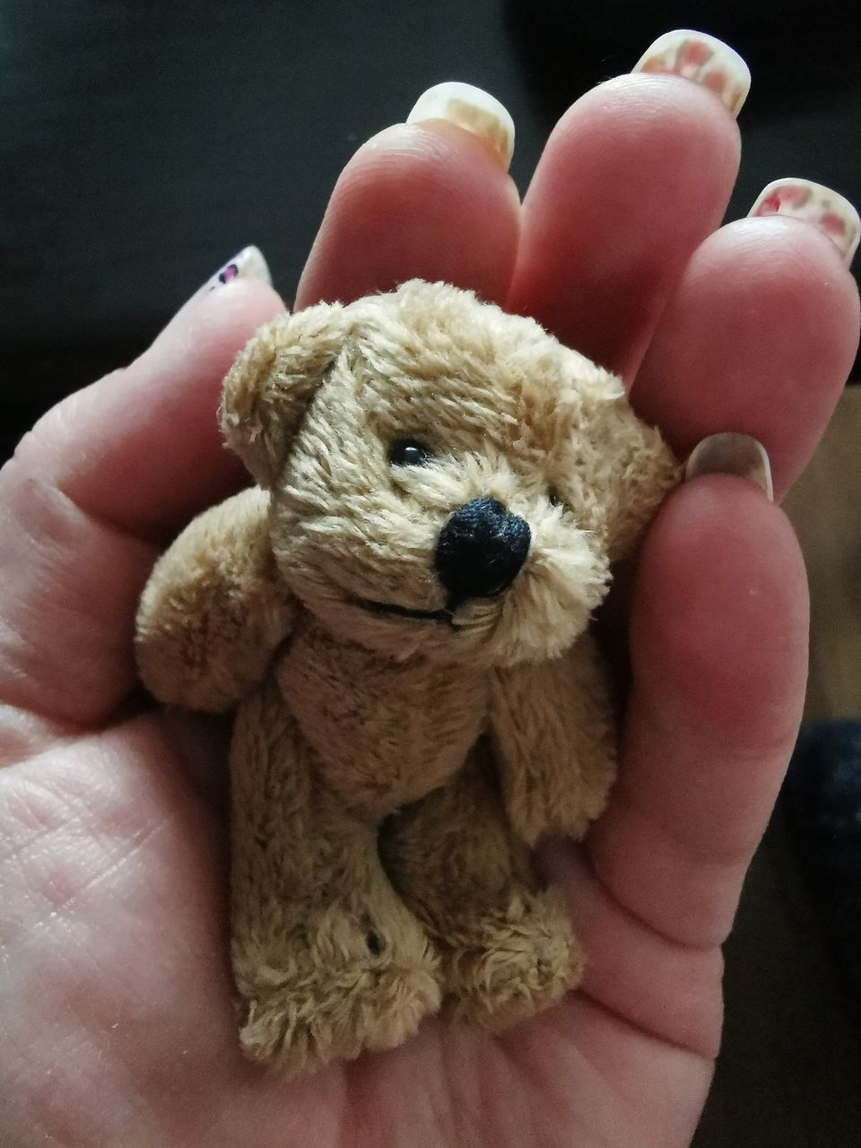 CLOSE-UP OF PERSON HAND HOLDING TOY