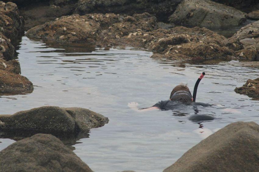 Exploring Holiday Snorkeling KwaZulu-Natal Coast Nature Outdoors Rock - Object Sea Swimming Water