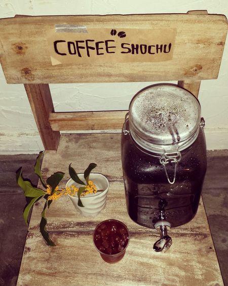 Bar Coffee Shootermag 珈琲焼酎 山荘小路 平尾2丁目 金木犀 Drinkdispenser WoodChair