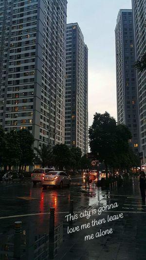 City Tree Water