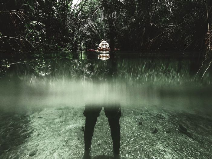 Person standing by lake in forest