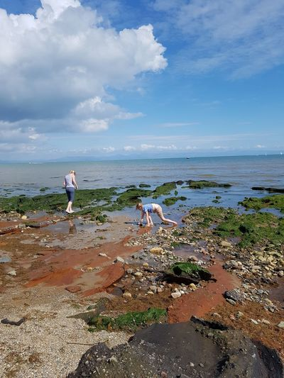 Mum And Child Rockpooling Mum And Child On Beach Child In Rockpool Child Crabbing Sea Beach One Person People Full Length Standing Adult