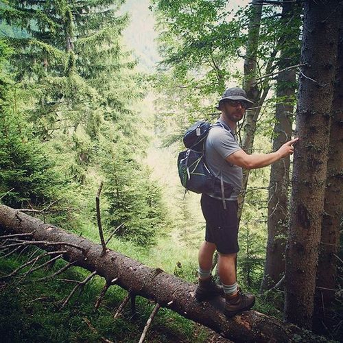 Maninwoods Maninforest Ranger Trapper Forest Woods Alps Austria Naturelover Naturelovers Bestshotoftheday Forestranger Natureshots Green Mountaineer Mounties