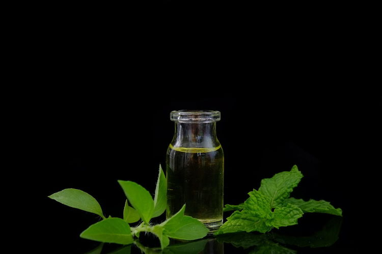 herbal oil Aromatherapy Herb Herbs Leaf 🍂 Medicine Nature Aromatherapy Oil Beauty In Nature Black Background Body Care Bottle Freshness Green Color Green Leaves Herbal Medicine Herbal Plant Leaf Massage Massage Oil Massage Therapy Oil Plant Spa Spa Treatment Studio Shot