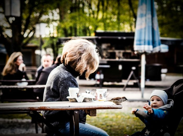 Myfuckingberlin Drastic Edit Olympus Olympusomd Olympus OM-D E-M5 Mk.II Getolympus Focus On Foreground Blurred Background Bokeh Point Of View From My Point Of View Outside Street Photography Streetphotography Up Close Street Photography Birds Of EyeEm  Bird Birds Table People People Watching People Photography People Of EyeEm People In The Background Sitting On A Bench
