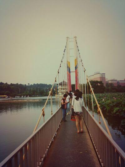 Traveling Bridge Vintage Flowers