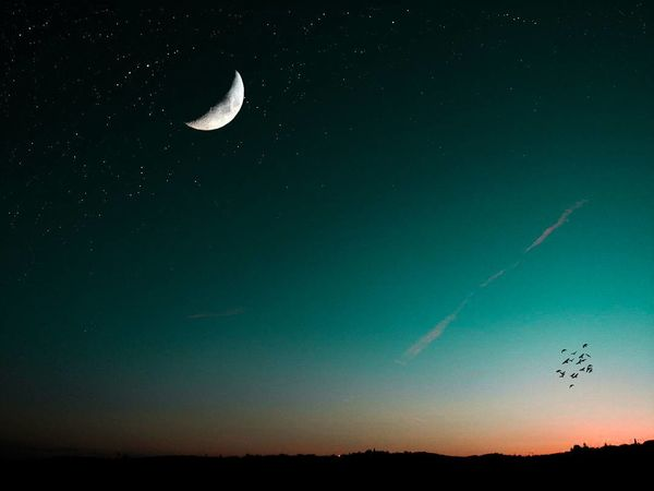 Starry nights 🌌🌉🌃 Moon Night Nature Astronomy Scenics Beauty In Nature Moonlight Tranquility Outdoors Landscape Crescent Sky No People Half Moon Space Bird