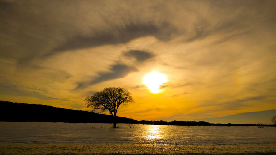 Snow field views at sunset... Canada Oka Tree Water Sunset Lake Silhouette Sky Cloud - Sky Single Tree Patchwork Landscape Bare Tree Isolated Lone Snow Covered Dried Plant Calm Hazy  Solar Eclipse Branch Single Dead Plant Countryside Lakeside Tranquil Scene Remote Idyllic