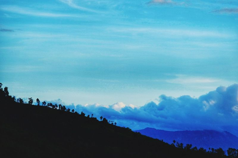 Sky Nature Beauty In Nature Cloud - Sky Silhouette Scenics Blue Outdoors No People Day Low Angle View