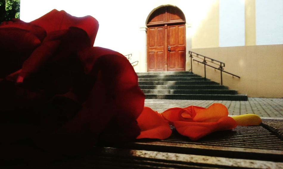 Temple Temple Entrance Temple - Building Roses Rose🌹 Rose - Flower Red Red Rose Orange Color Orange Rose Temple Square Enjoying Life Belief Godscreation Stairs Staircase Temple Staircase Taking Pictures Takimg Photos  Hanging Out Outdoors