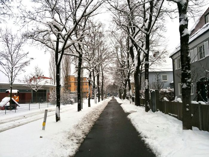 Snowing Snowstreet Street In Winter Nature Winter Time Winter Trees White Winter