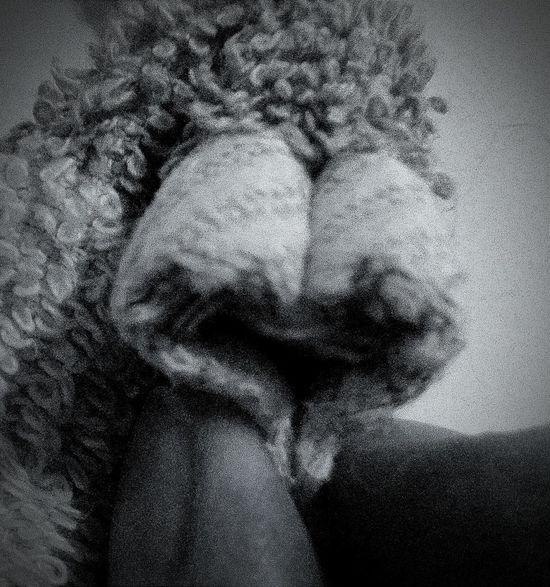 Herz Hanging Out Taking Photos Hello World Hi! Enjoying Life Shdaows Schattenspiel  Black And White Shadows & Lights EyeEm EeYem Best Shots Picoftheday Minimal Apstract Taking Photos Picture Nahaufnahme Handtuch