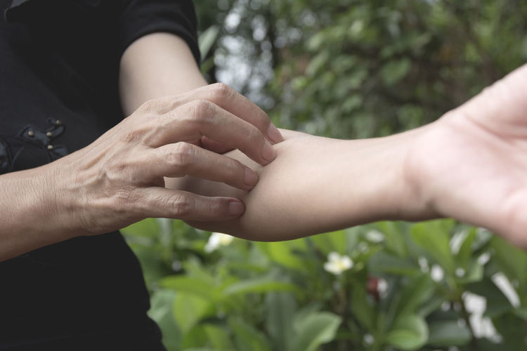 Adult Body Part Bonding Care Close-up Day Family Finger Focus On Foreground Hand Human Body Part Human Finger Human Hand Love Plant Positive Emotion Real People Togetherness Women