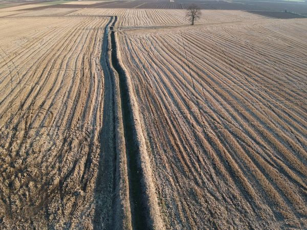 Risaie con canali d'irrigazione Dji Spark DJI X Eyeem Dji Landscape Agriculture Pattern Nature Day Outdoors No People Arid Climate Sand Aerial View Scenics Rural Scene Beauty In Nature Plowed Field