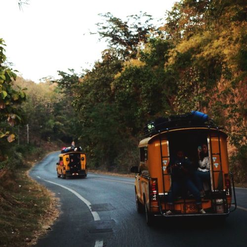 Tree Transportation Street Land Vehicle Outdoors Road Nature Day No People Thailand Doisaket Chiang Mai | Thailand Enjoying Life Enjoy The New Normal Travel Beauty In Nature Travel Destinations Lifestyles Adventure Forest Mountain