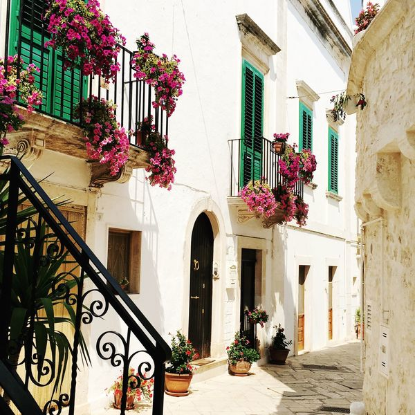 Wandering around Italian streets in Puglia Street Streetstyle Summer Locorotondo Southern Italy Puglia Italy Architecture Building Exterior Built Structure Window House Residential Building Potted Plant Balcony Outdoors Flower Plant Whitewashed Window Box