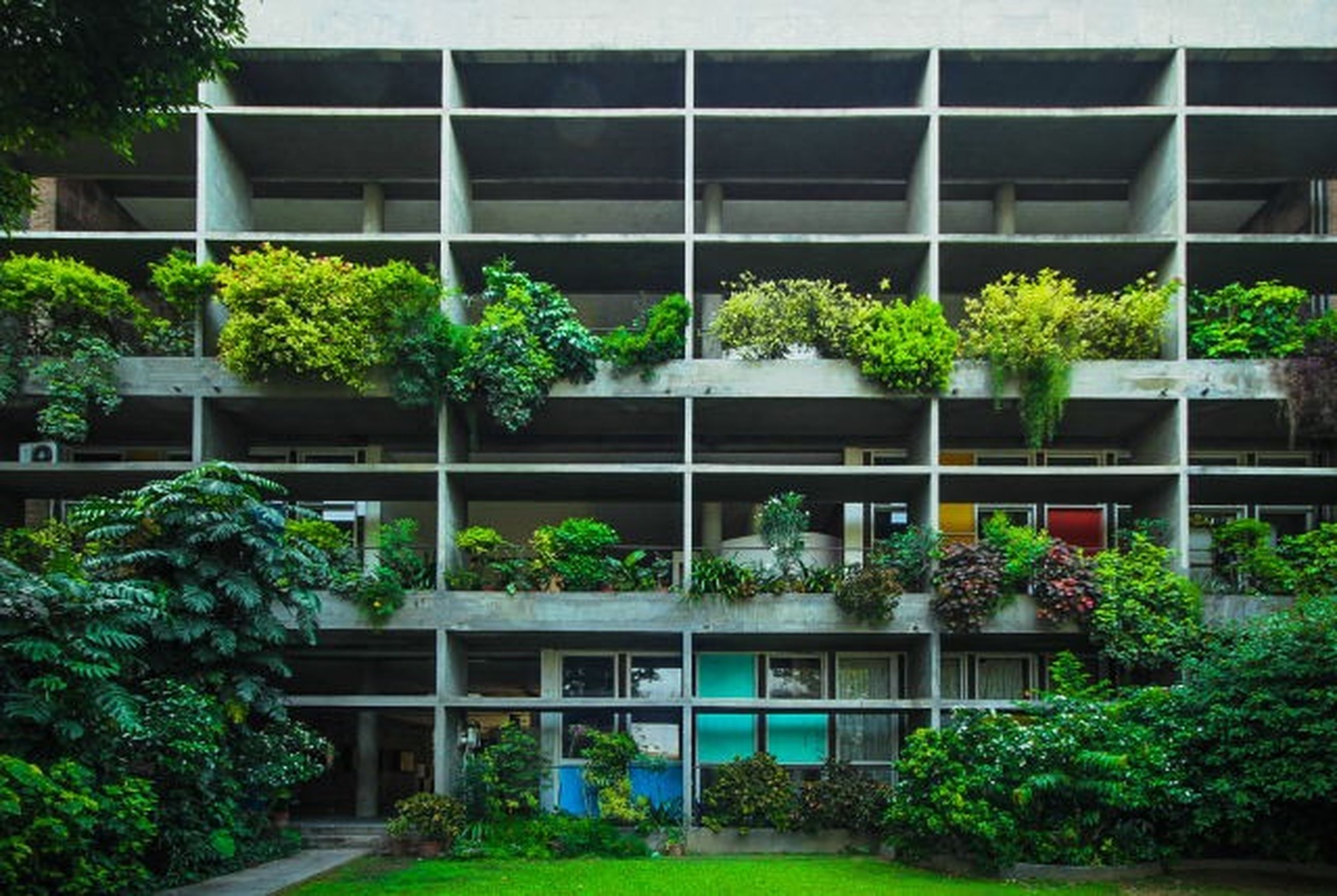 building exterior, built structure, architecture, plant, tree, growth, window, potted plant, green color, balcony, house, glass - material, residential structure, residential building, city, front or back yard, day, reflection, nature, outdoors
