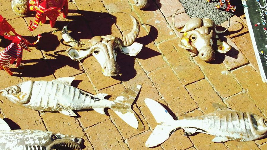 Walkabout in Kalkbay. Streetphotography Fisheyednbullheaded Summer2014
