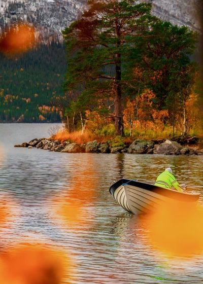 motorboat in autumn colours Boat EyeEm Selects Autumn Leafs Autumn🍁🍁🍁 Autumn colors Autumn Collection Leaves_collection Treescollection Tree Water Flood Autumn Lake Forest Sunset Change Reflection Floating On Water Sailing Boat Outrigger Water Vehicle Nautical Vessel Mast Buoy Calm Floating Swimming