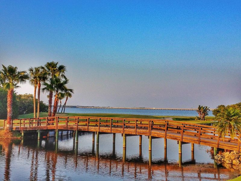 Sunset Bridge Palm Trees Florida Clearwater Ocean Water Golfcourse Waterscape Showcase: February