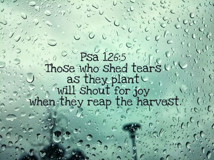 Tear Tears Drops Rain Joy Enjoying Life Check This Out Bible Psalm Psalms Truth