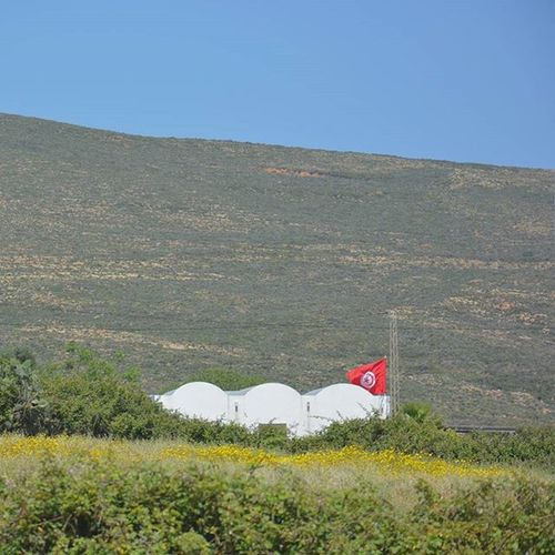 Tunisia IgersTunisia Wikilovesearth Spring Wletn2016 Wle2016 اليابسة ! ... اليابسة ! :)