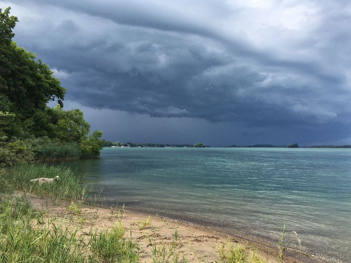 A storms coming Detroit River Michigan Summer English Setter Riverside Photography Storm Stormy Weather Storm Clouds Stormy Skies Sugar Island On The Beach