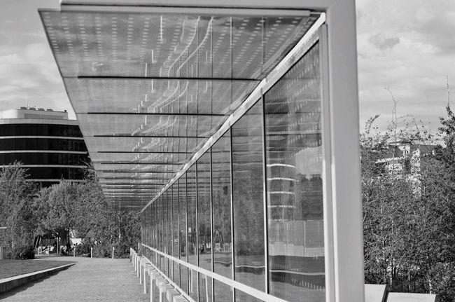 Kevinnakphoto Seattle, Washington Seattle Glass - Material Olympicsculpturepark