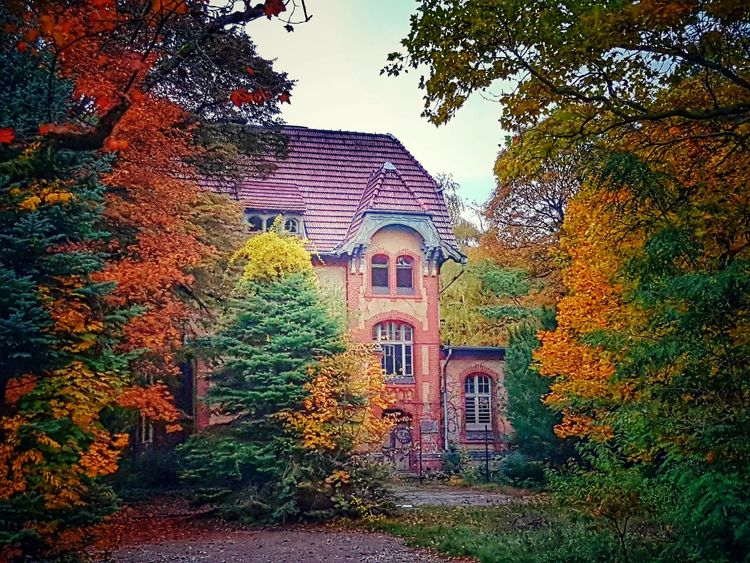 Architecture Built Structure Tree Building Exterior No People History Sky Outdoors Horizontal Day Lost Places Lostplaces Urban Exploration Urbex Urbexphotography Travel Destinations Popular Photos Tranquil Scene Autumn Colors Indiansummer Bad Condition