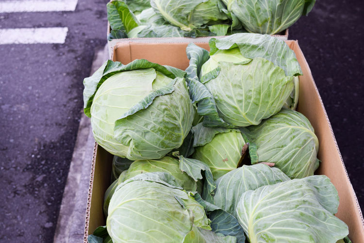 High angle view of cabbages in box