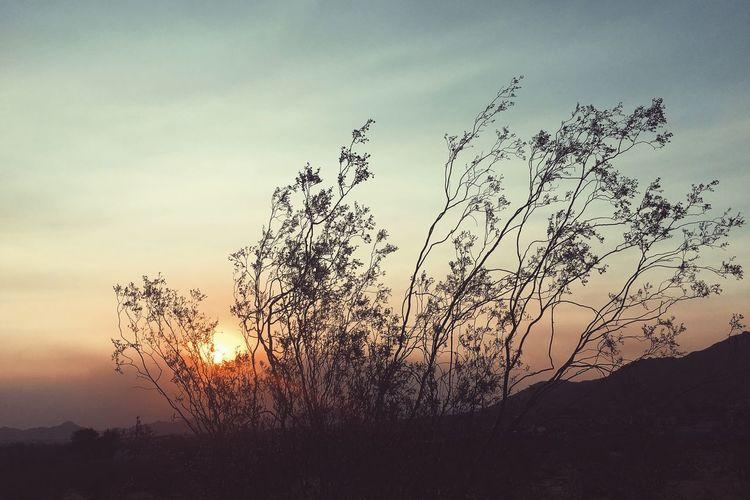 Desert Landscape Sunset Desert Landscape Photography Blue Orange