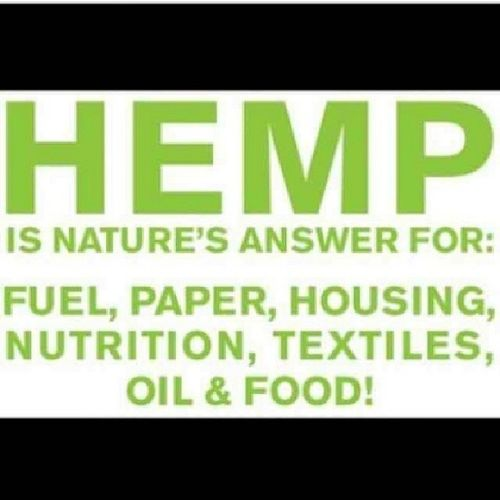 Hemp is the solution to a lot of our problems Hempuse SaveMotherEarth Herb Ital legalizehemp