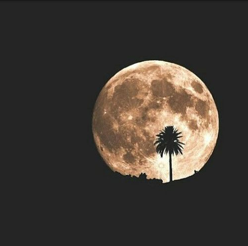 Moon on the...