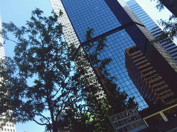Found On The Roll Urbanphotography Urban City Buildings Sky Scrapers Looking Up Urban Photography Reflection Glass Building