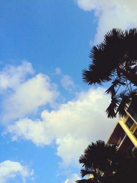 Taking Photos Relaxing Expat Life