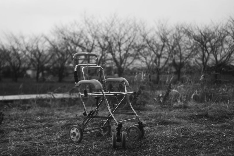 Japan Carriage Baby Carriage Break Broken Bw Black And White Monochrome Blackandwhite Leica Sonnar 50mm F2 Carl Zeiss Jena Heartbreak Nature Tree Bare Tree Agricultural Field Growing Field Farmland Treelined Bad Condition Lone My Best Photo