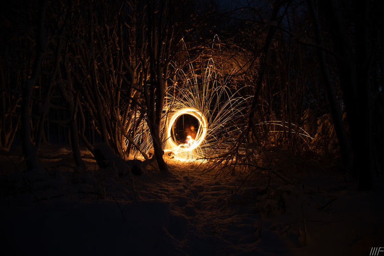 Night Wire Wool Tree Motion Illuminated Land Long Exposure Forest Nature Glowing Burning Fire Plant Fire - Natural Phenomenon Spinning Blurred Motion Dark No People Heat - Temperature Outdoors