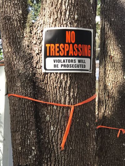 Raise your hand if you hate it when you are exploring and come upon this sign... Text Western Script Communication No Trespassing Sign Warning Day No People Outdoors Guidance Tree Trunk Close-up Tree Private Property No Trespassing Sign Privacy Boundary Orange Tape
