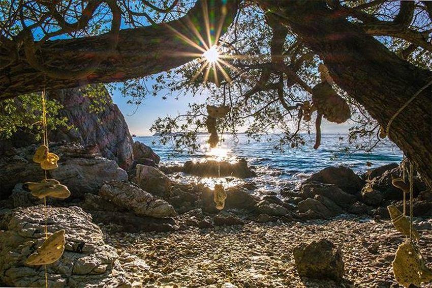 . . ∆ Summer's sundown . (Tar - Yay beach , Larn island) . . . Fujifilm Fujifilm_id Thailand Thailand_allshots Thaistagram Thaitraveling Ig_thailandia Igersthailand Igersworldwide Siamthai_ig Loves_siam Loves_united_thailand Webangkok Loves_indochina Loves_sunset Sunset_madness Sunrise_sunsets_aroundworld Sunsetlovers Icu_sunset Fujifeed Adayinthailand Sunset Instago Summertime Beach picoftheday igmasters