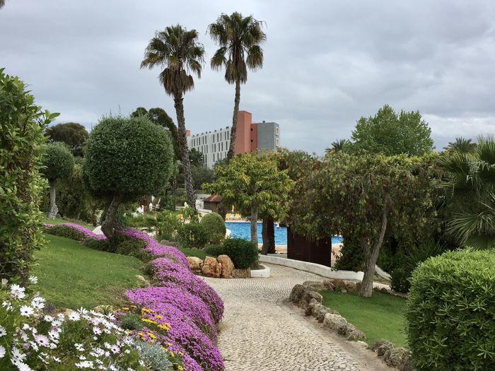 Algarve garden