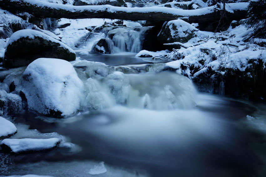 Beauty In Nature Cold Temperature Day Environment Flowing Flowing Water Frozen Harz Ice Land Long Exposure Motion Nature No People Outdoors Power In Nature Purity River Scenics - Nature Snow Stream - Flowing Water Tree Water Waterfall Winter
