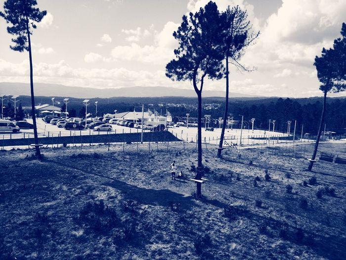 Arvorismo em Vila Real :D