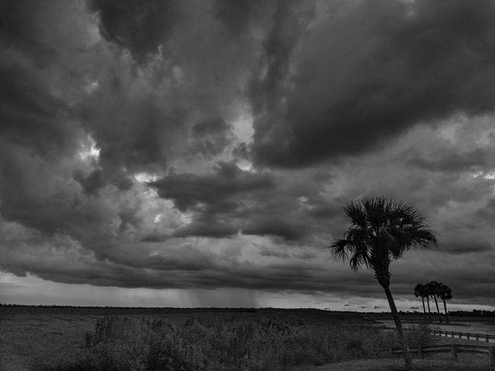Photography #photooftheday #streamzoofamily #beautiful #God'sbeauty GodIsGreat Thunderstorm Storm Cloud Dramatic Sky Sky Cloud - Sky Landscape Storm Cloudscape