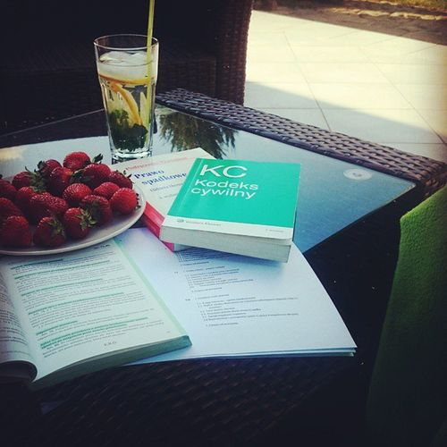 Studentlife  Lawstudent Allyouneedislaw Lawisintheair FreeTime Civillaw Books Notes Strawberrys Water Citrone Mint Ice Garden Nature Instaday Instalaw Instastudent 🍋🍓🌱📖📚🌳🌲🌞